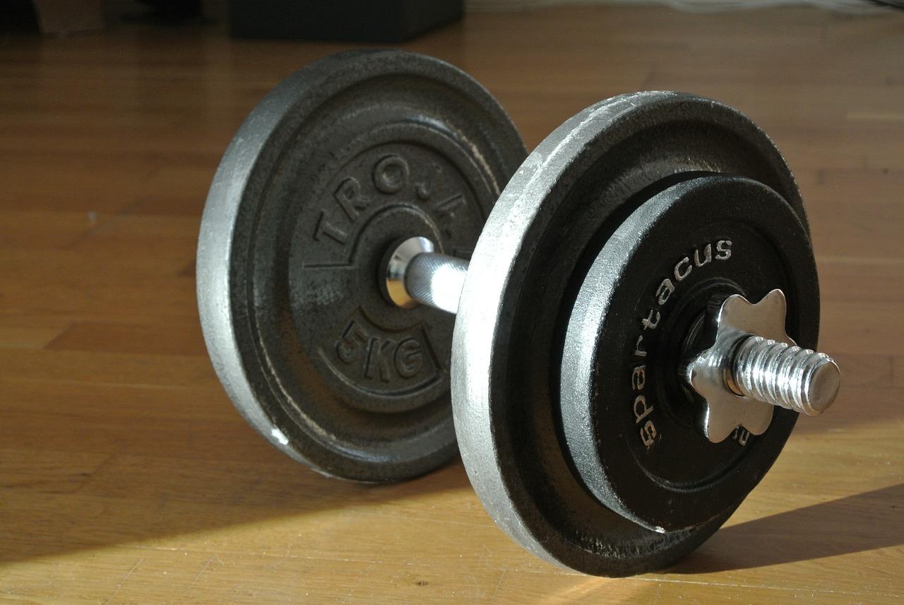 筋肉とトレーニング