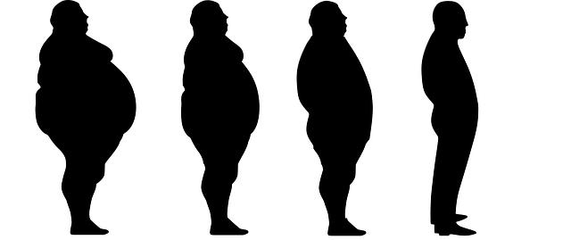 脂肪・肥満・エイジング