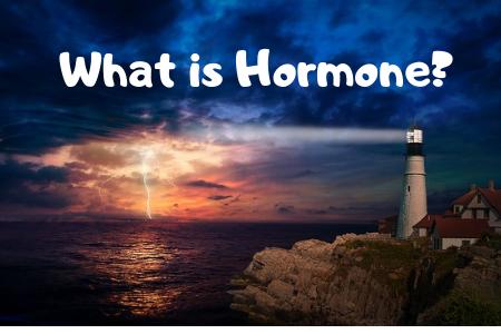ホルモンとシグナル