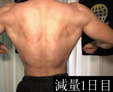 減量時の背中の筋肉